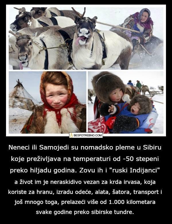 RUSIJA  - Page 3 Sibir10