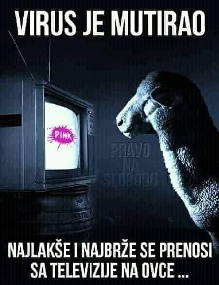 "MEDIJSKE MANIPULACIJE-KORONA KOVID ""VIRUS""! - Page 5 Virus15"