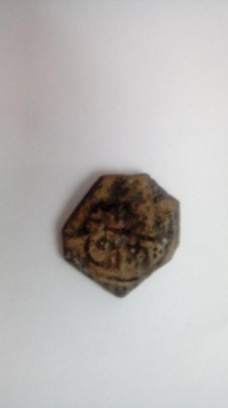 Felus nazari, Granada 880H. 20170428