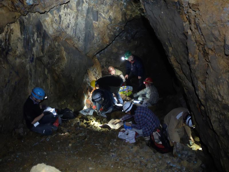 20-21 de maig 2017: II Trobada Interpirenaica de Micromineralogia i Sistemàtica Mineral 13-r10