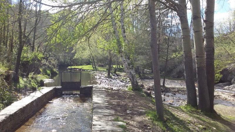 10 Junio ruta y picnic por la Sierra del Rincón  Img-2029