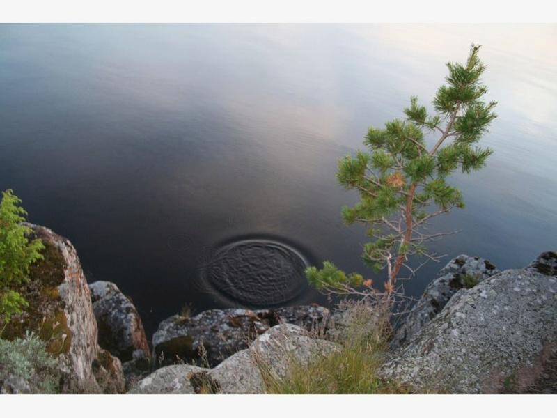 Туман над озером A_aiie10