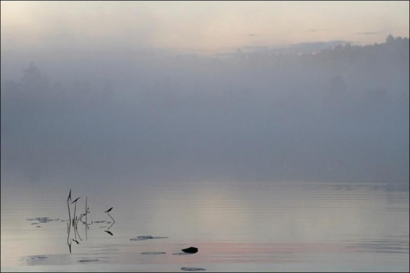 Туман над озером Dz10