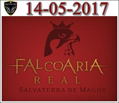 **Falcoaria Real  14-05-2017** Falcoa12