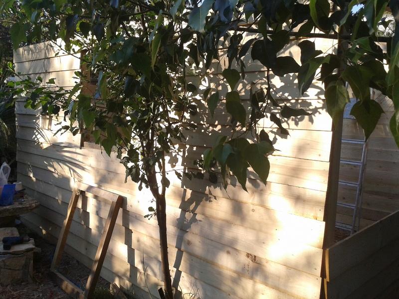 Αποθηκη κηπου 2013-012