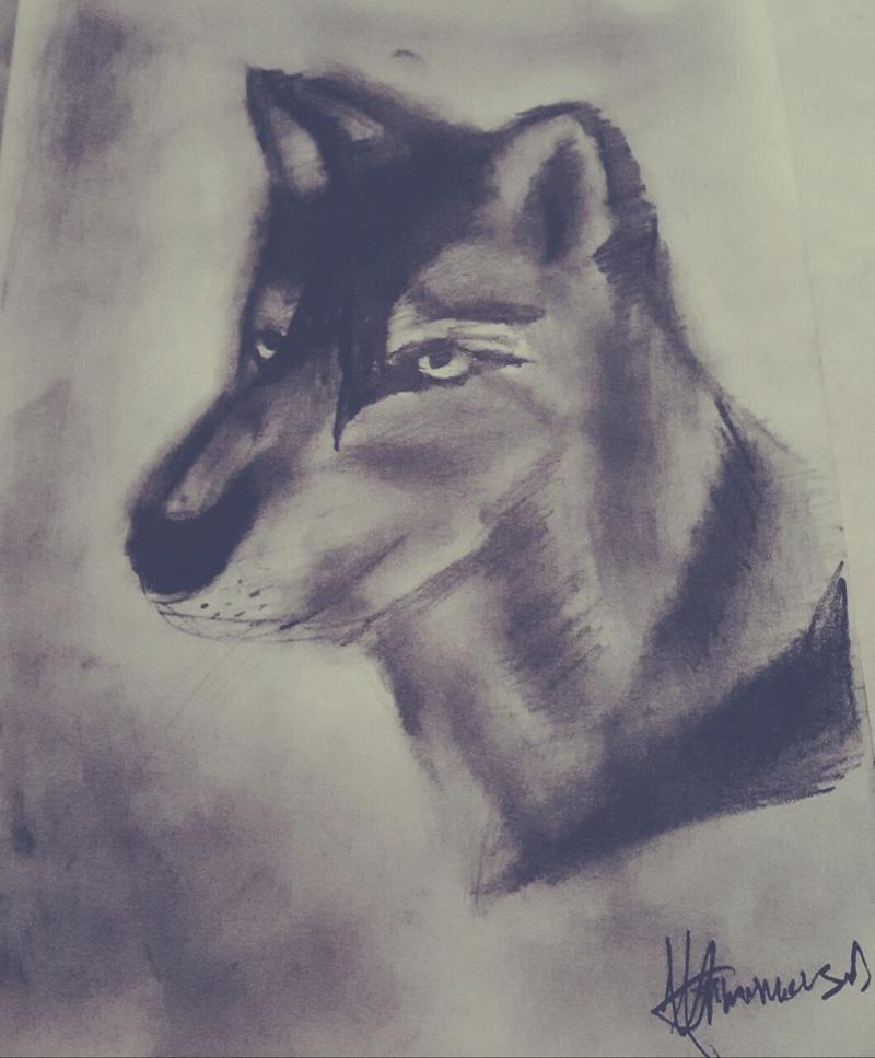 Προσωπικές σας Δημιουργίες !!! - Σελίδα 5 Wolf10