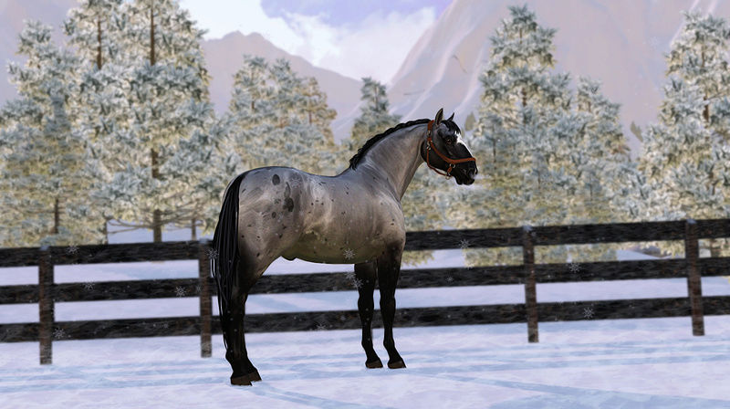Регистрация лошадей в RHF 2 - Страница 5 Screai11