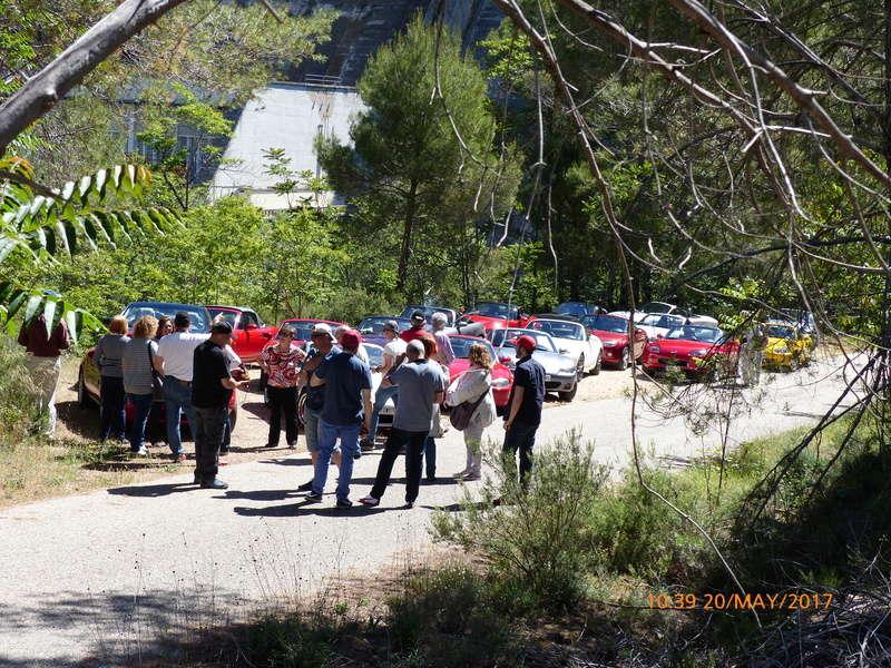 Salida 20 de mayo por los pantanos de la cabecera del Tajo - Página 5 P1010110