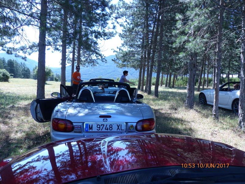 10 Junio ruta y picnic por la Sierra del Rincón  - Página 2 P1010116