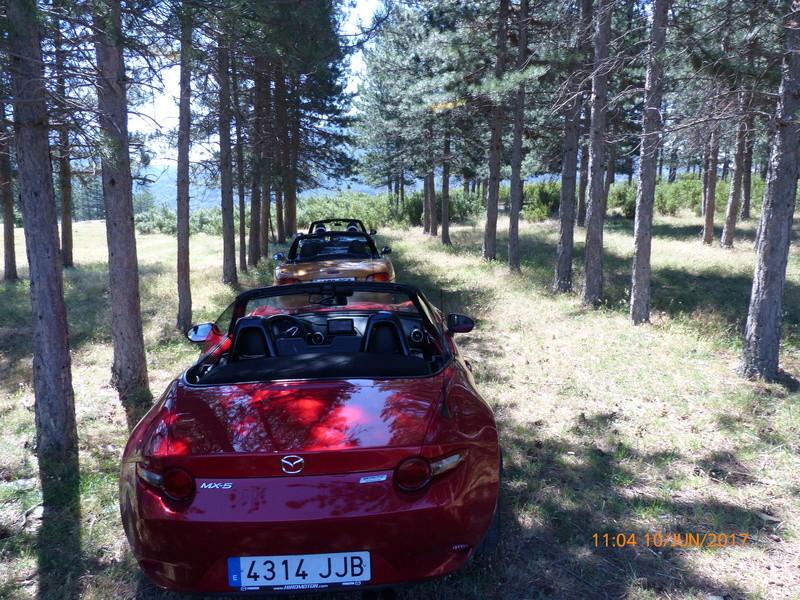 10 Junio ruta y picnic por la Sierra del Rincón  - Página 2 P1010118