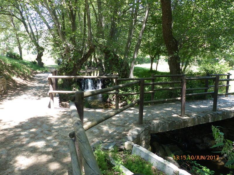 10 Junio ruta y picnic por la Sierra del Rincón  - Página 2 P1010121