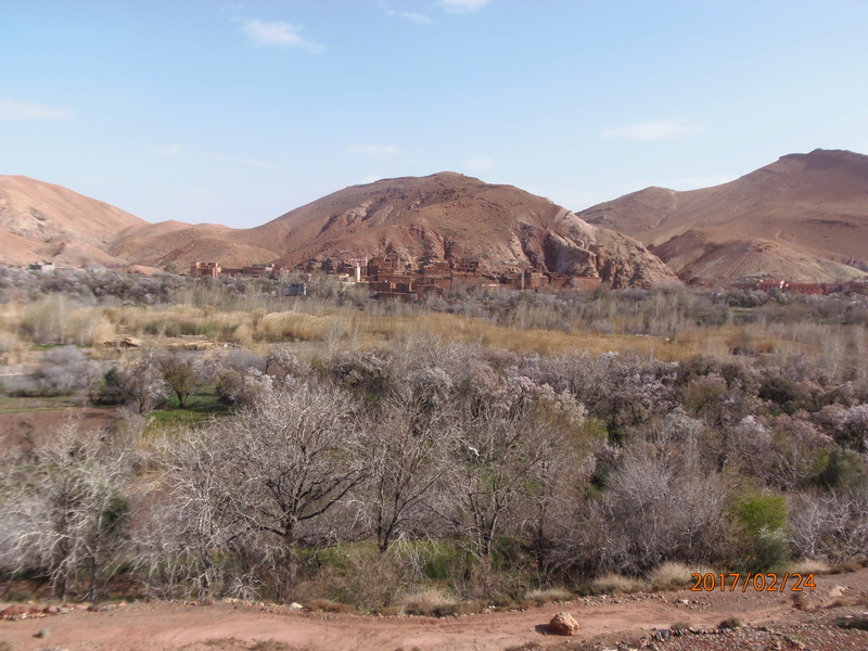 [Maroc Camp/Dernières nouvelles]  P2240310