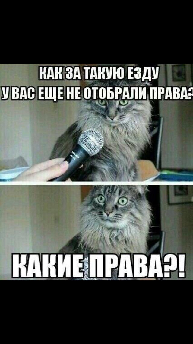 Юмор, приколы... Imager10