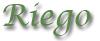 pretutorial para crear un bonsai de pino Riego12