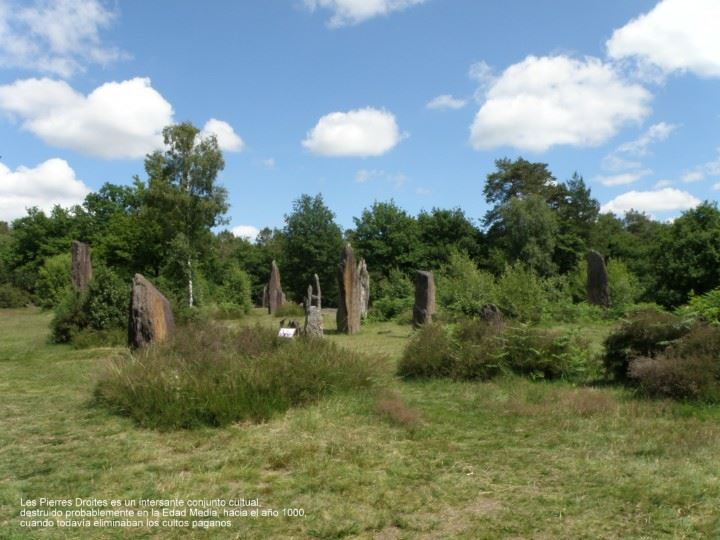 Les ArqueoPedres de la Sabine 814