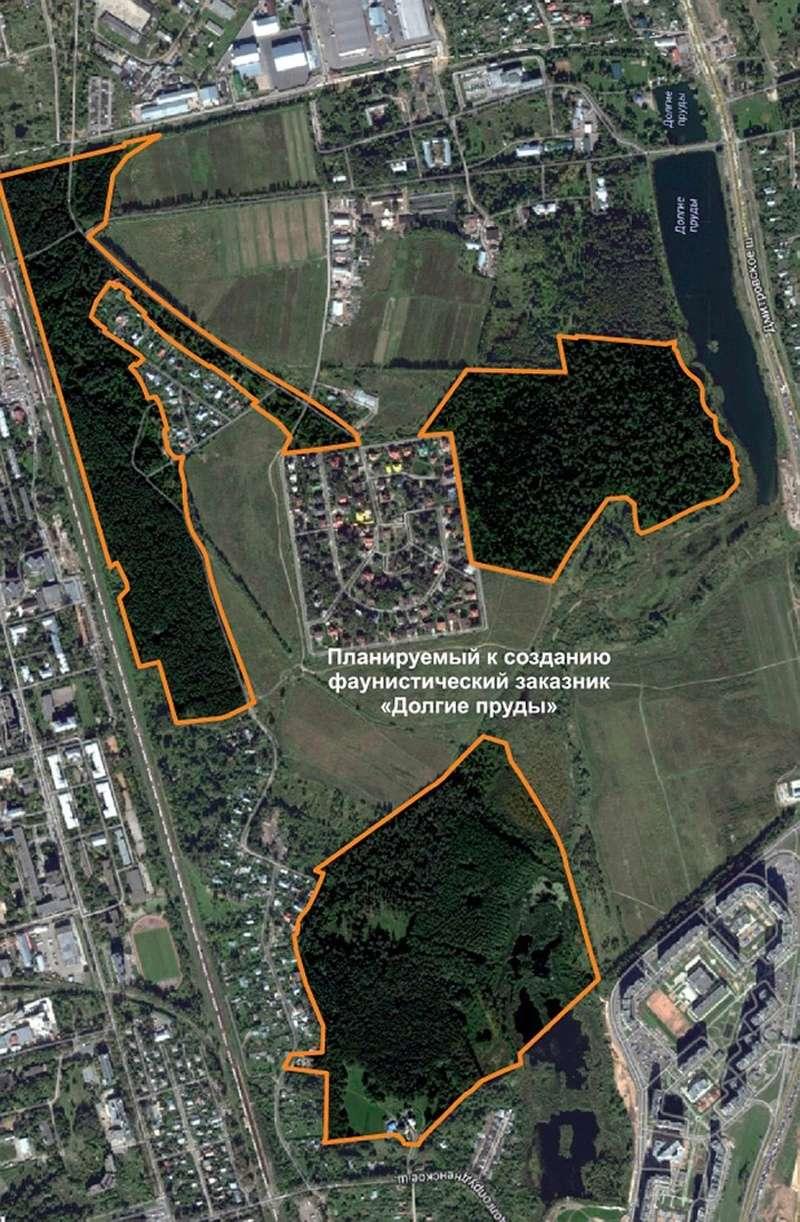 Первый в Москве парк водоплавающих птиц создадут на севере города Wx108010