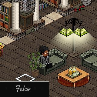 Présentation de Falco Falcoo10