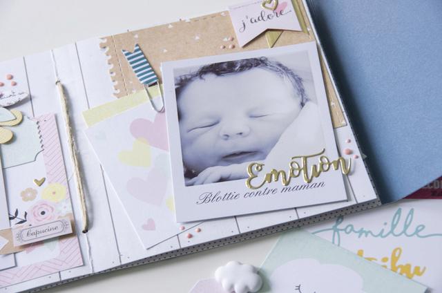 Make & Take Fabinou - Mini Album Famille _igp4225