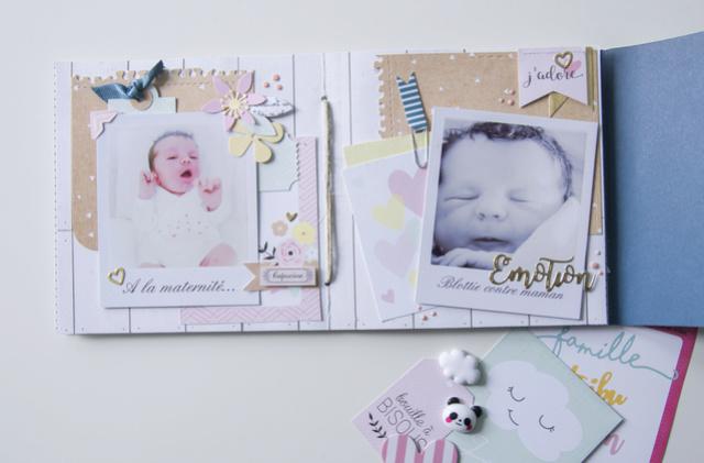 Make & Take Fabinou - Mini Album Famille _igp4226