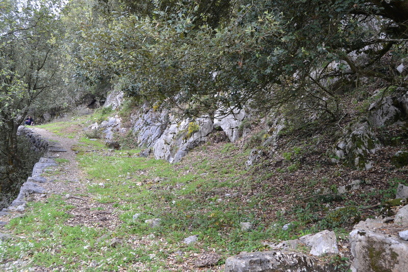 Mina Ninón (mina La Sierre o Santa Amelia). Cabrales Dsc_3416