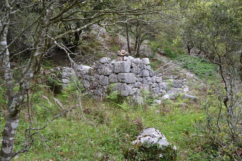 Mina Ninón (mina La Sierre o Santa Amelia). Cabrales Dsc_3418
