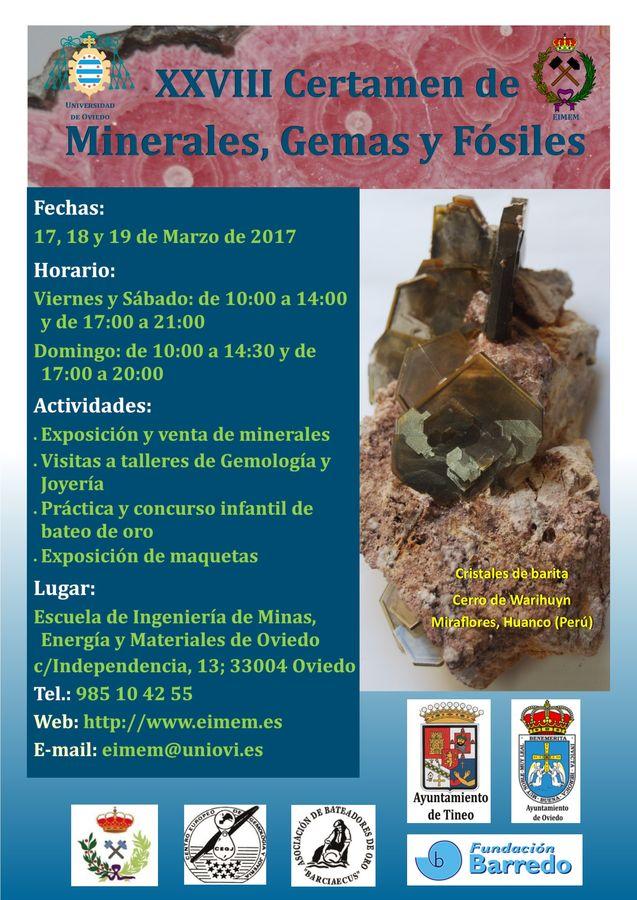 XVIII Certamen de minerales, fósiles y gemas de la Escuela de Minas de Oviedo T_cart12