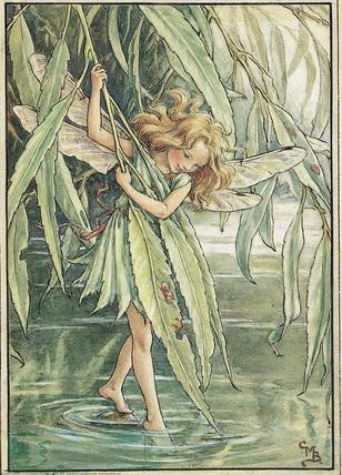 Любимые деревья фей Willow10