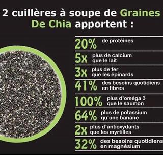 Les graines de chia Sans_t10
