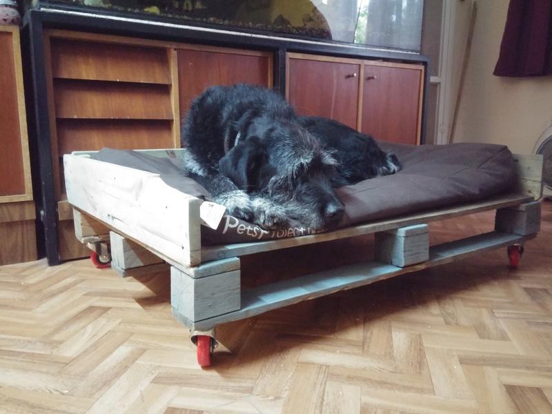 Лежанки для собак 20170412