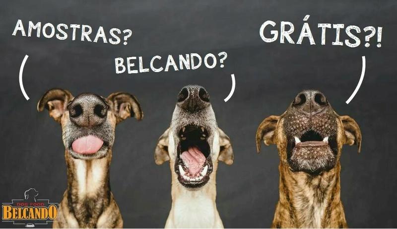 Amostras Belcando - Ração cão  Img_3210