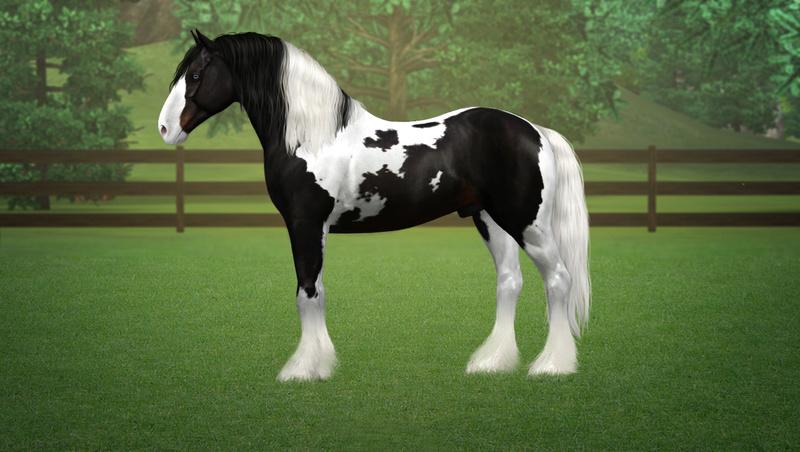 Регистрация лошадей в RHF 2 - Страница 5 Drimti13