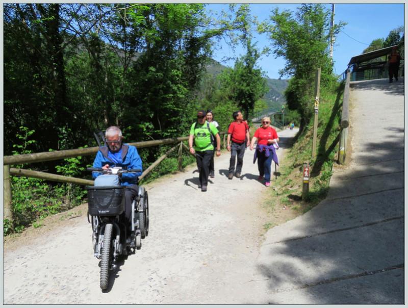 Puente de ruta por Asturias 213