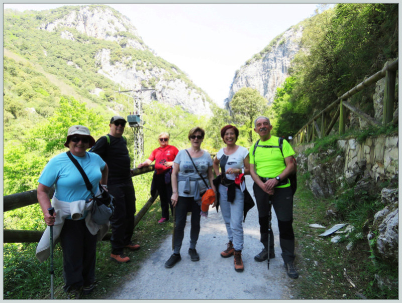Puente de ruta por Asturias 313