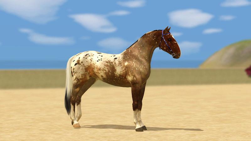 Регистрация лошадей в RHF 2 - Страница 5 Screen11