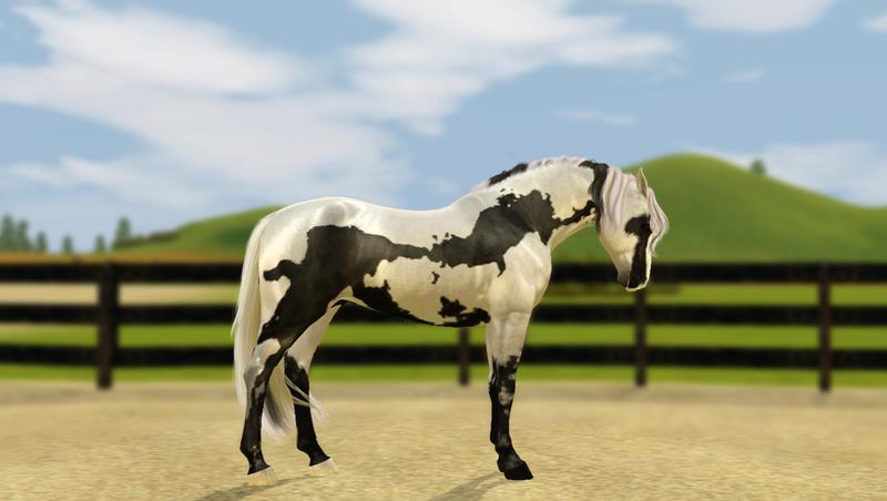 Регистрация лошадей в RHF 2 - Страница 5 Screen13