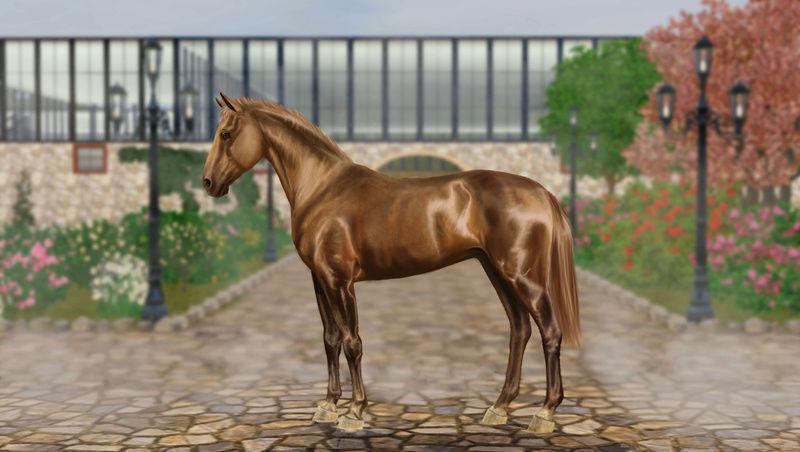 Регистрация лошадей в RHF 2 - Страница 5 Tib10