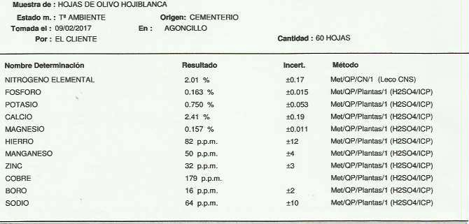 Análisis foliar AMZ Logroño (La Rioja) Cement11