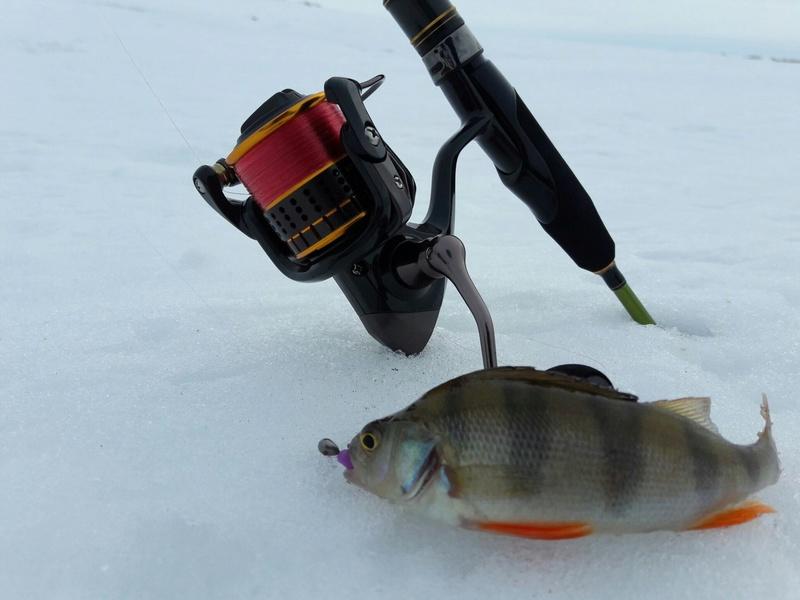 Отчёты о рыбалках - Страница 30 20a9yj10