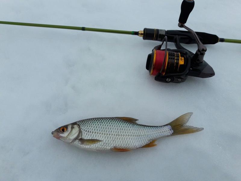 Отчёты о рыбалках - Страница 30 Jqueyc10