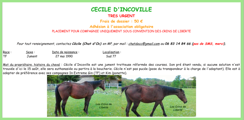Dp 77, 27 ans, Cécile d'Incoville, jument TF, sauvée par Elodie - Page 2 Fiche_11