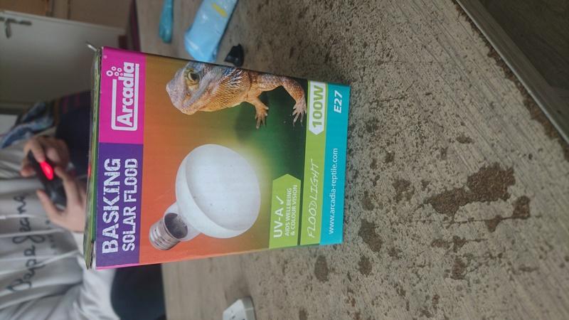 Lampe chauffante  14884511