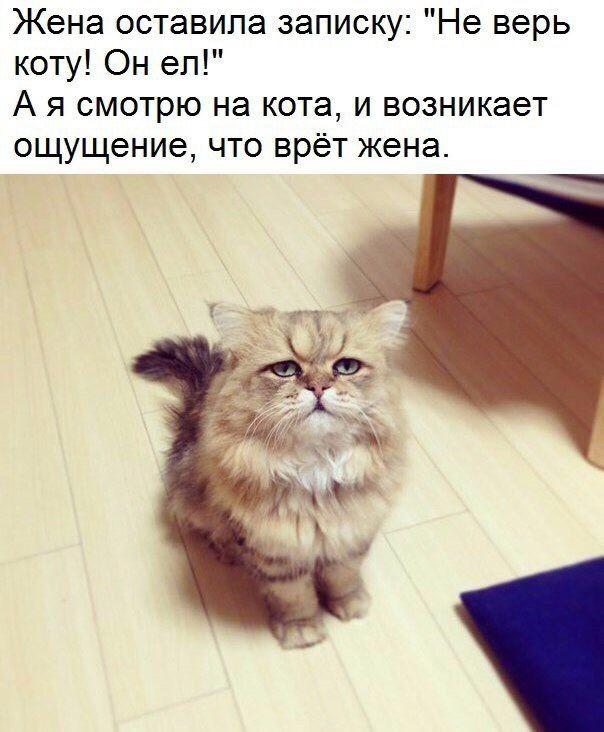 Юмор, приколы... - Страница 2 Imagej10