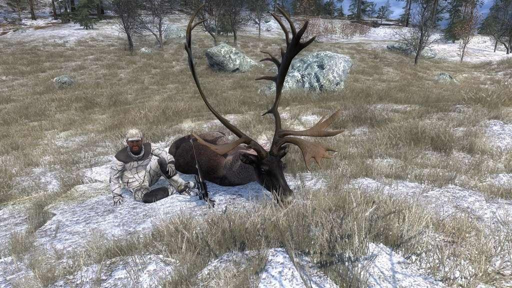 TOP 5 Reindeer // Reno 2017-026