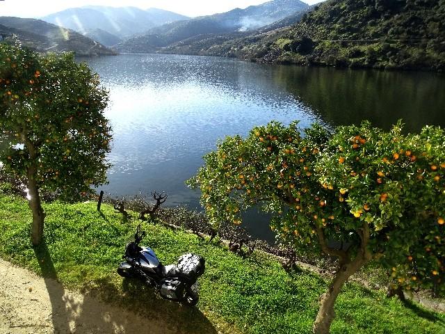 Douro - DOURO Primavera antecipada Dsc09325