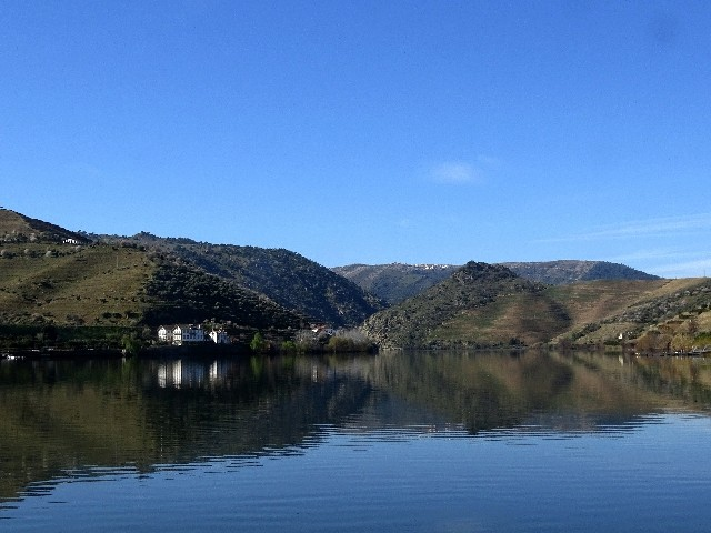 Douro - DOURO Primavera antecipada Dsc09335