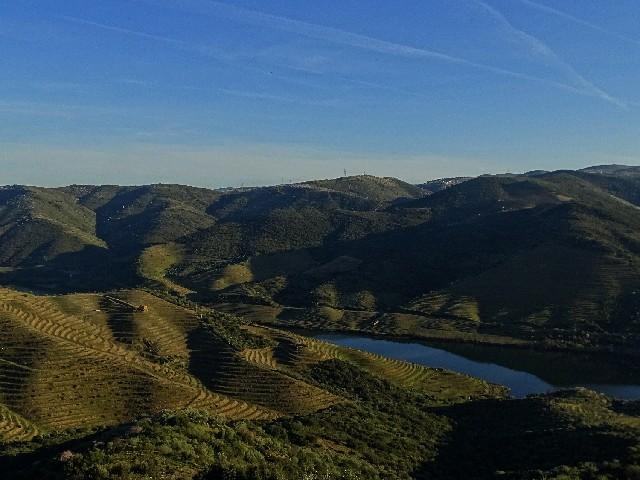 Douro - DOURO Primavera antecipada Dsc09422