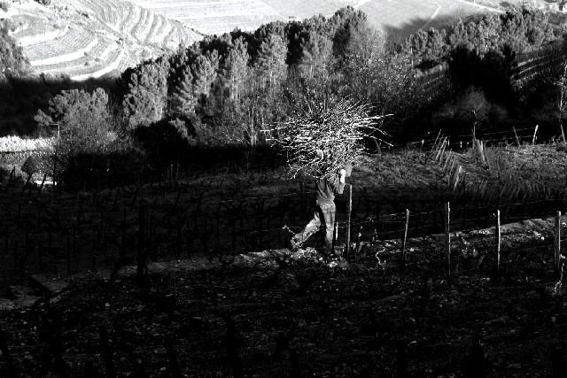 Pelas aldeias do Marão - Fontes Img_0525