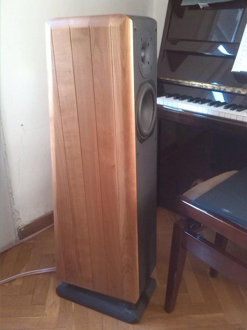 Amplificador para Chario Pegasus Chario11