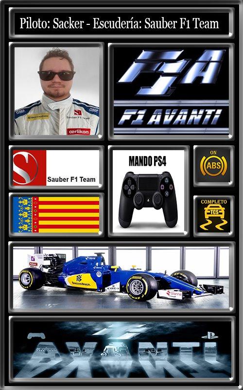 SAUBER F1 TEAM AVANTI 13_lic10