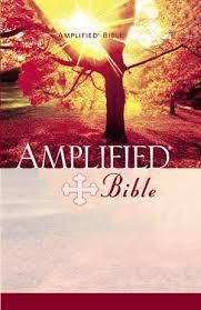 [Bíblia] Novo Testamento - Versão Ampliada Biblia11